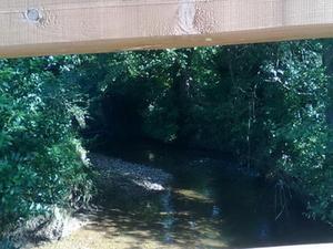 vista desde el puente de madera