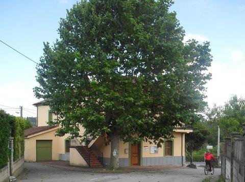 AV Granda - Tapas de alcantarillado - Asociacion de Vecinos Santo Tomas de Granda
