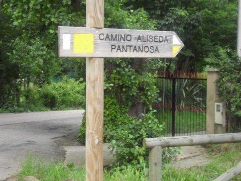 AV Granda - LA ALISEDA - Asociacion de Vecinos Santo Tomas de Granda