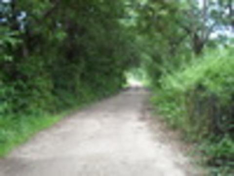 AV Granda - Caminos de la parroquia - Asociacion de Vecinos Santo Tomas de Granda